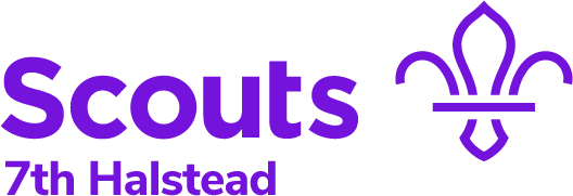 Halstead Scouts