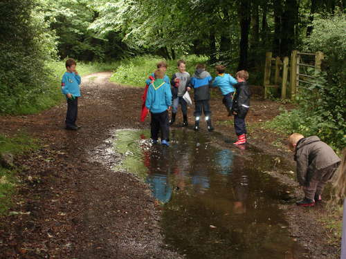 We have a big puddle - Guess what we did next!!!
